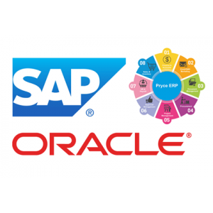 SAP and Oracle ERP expertise..